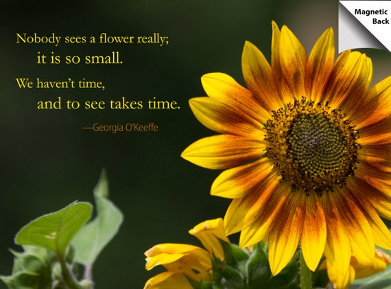 11++ Inspirational Quotes With Sunflowers - Brian Quote