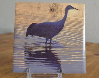 Ceramic Art Tile of Sandhill Crane Coaster Size  - Wading in Water at Bosque de Apache - Landscape New Mexico - From Photograph
