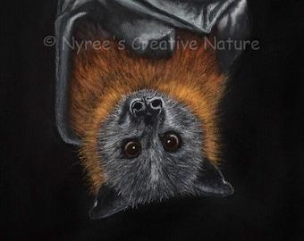 Limited Edition Grey-Headed Flying Fox Giclée Print
