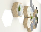 Hexagon Painting Tool | Enhance Your Hexagon Shelf Installation With Wall Painted Hexagons