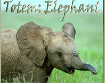 THREEBIES! Lot #519 - Totems: Elephant, Raccoon, Monkey - Love Potion Magickal Perfumerie