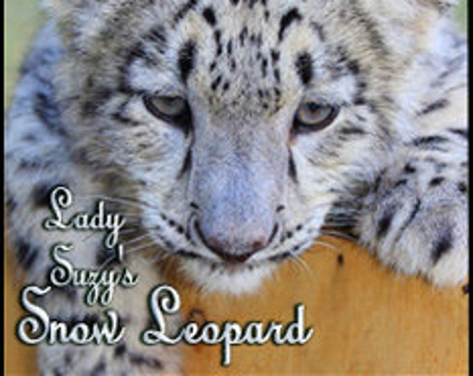 THREEBIES! Lot #709 - PEs: Lady Suzy's Snow Leopard, Shivonne's Mama Bear, Carolyn's Nile Spice