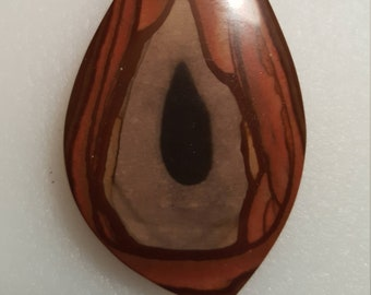 Petrified Forest Wood Pendant