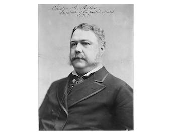 Chester A. Arthur - 1882 - Vintage Historical Photo - US President Print