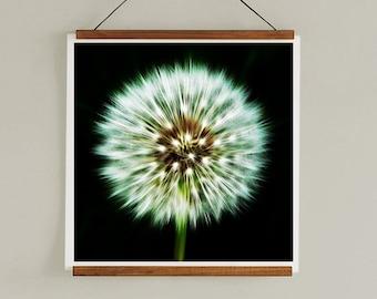 Abstract Print - Dandelion Print, Abstract Print, Minimalist Art Print, Wall Art, Minimalist Photography Print, Photography Abstract Art