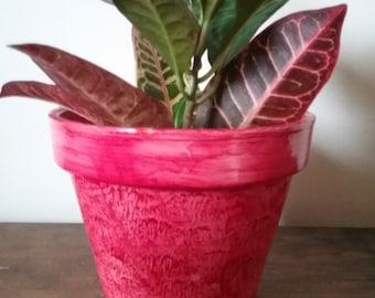 Flower pot vinegar painted in vermilion