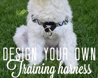 Custom Training Harness with front clip