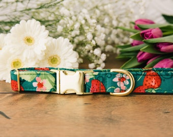 Strawberry Dog Collar, Strawberries, Floral, Strawberry Shortcake, Green, Red, Green Dog Collar, Gold Metal Buckle