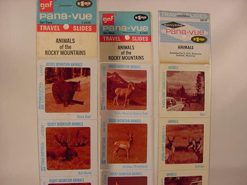 Souvenir GAF Pana-Vue 2X2 Travel Slides Vintage Old Collectible Animals of the Rocky Mountains