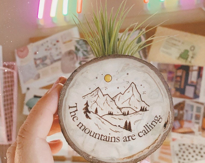 Air plant magnet (The mountains are calling)