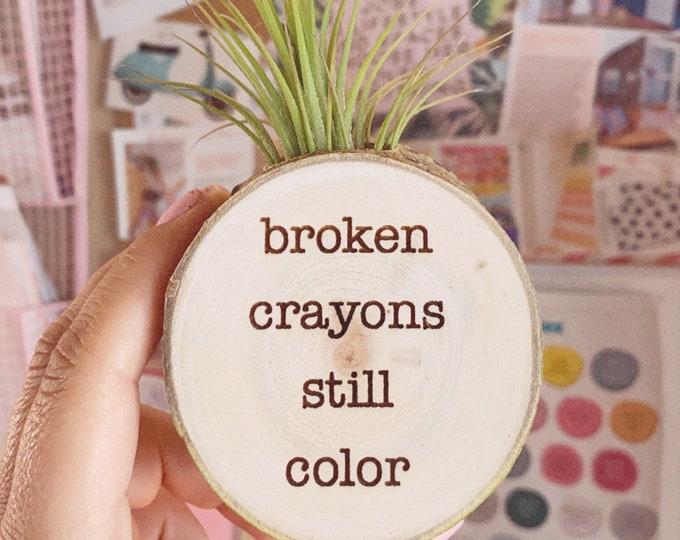 "Air plant magnet ""Broken crayons still color"""