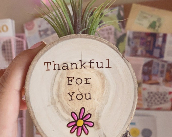 Air plant magnet (Thankful)