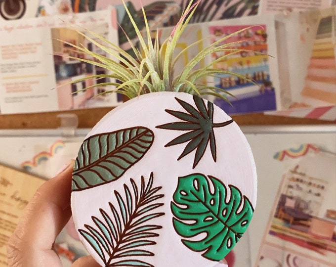California Dreaming air plants magnet (planter)