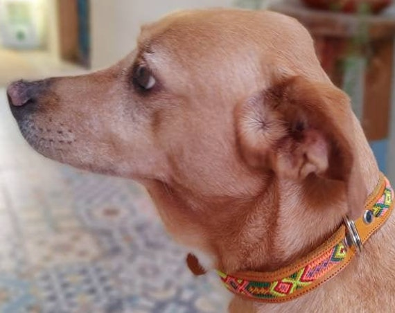 Dog collar * CHIAPAS * multicolor, Hand braided, natural leather, ethnic style, boho pet, Mexican collar, 40/45, macrame
