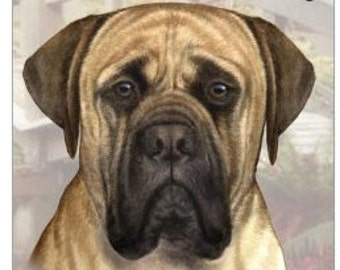 """Mastiff Wood Sign """"A Spoiled Rotten Dog Lives Here""""with Artistic Photograph Measuring 10 by 4 Inches"""