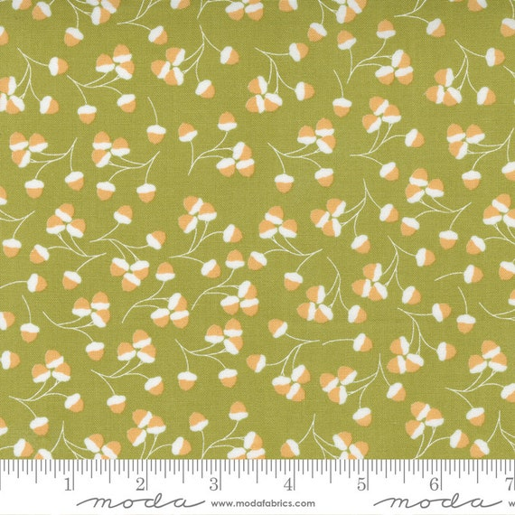 Cozy Up- 1/2 Yard Increments, Cut Continuously (29123 15 Acorns Moss) by Corey Yoder for Moda Fabrics