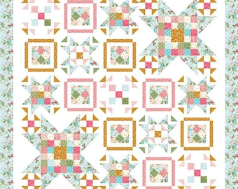 """Swinging on a Star Boxed Quilt Kit (Finished Size 73"""" x 73"""") Stardust by Beverly McCullough for Riley Blake Designs"""