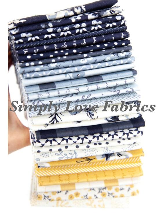 Gingham Foundry -1/2 Yard Bundle-11130-27 Fabrics by My Minds Eye for Riley Blake Designs
