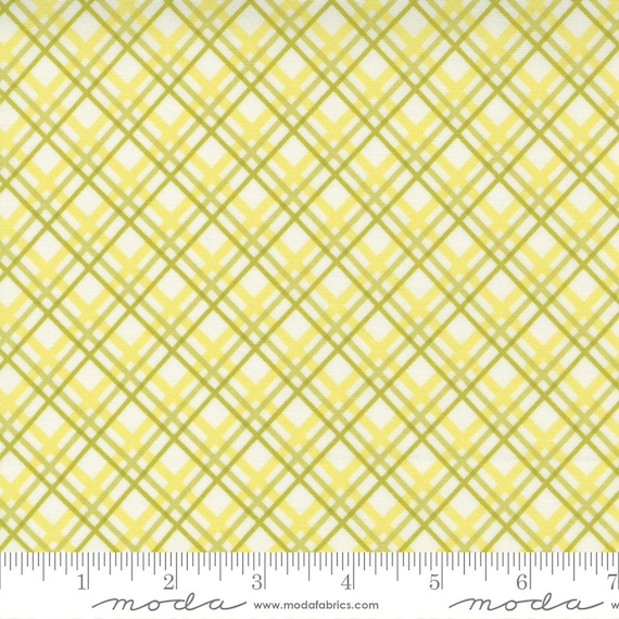 Pumpkins and Blossoms- 1/2 Yard Increments, Cut Continuously  (20424 24 Plaid Bias Check - Sprout) by Fig Tree & Co. for Moda