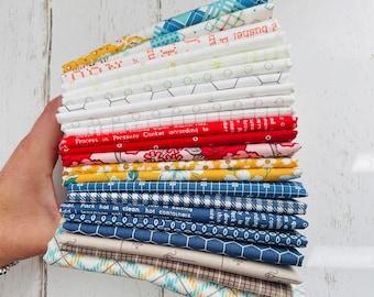 1/4 Yard Bundle (23 Fabrics) Mixed by Lori Holt for Riley Blake Designs