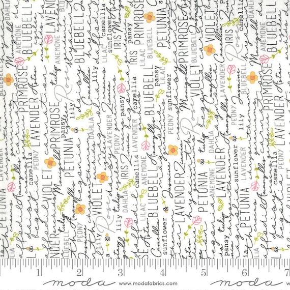 Spring Chicken- 1/2 Yard Increments, Cut Continuously (55520 11 Posey Cream)  by Sweetwater for Moda