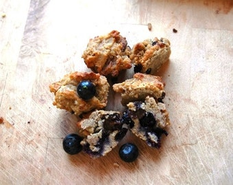 Blueberry Tropical Muffins