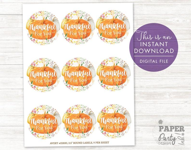 Pumpkin Thank You Tags, Thankful Tags, Pumpkin Favor Tags, Pumpkin Thank  You Sticker Set, 2 5