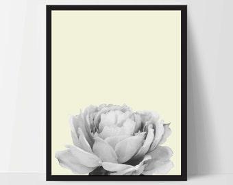 Yellow Peony Flower, Wall Art, Artwork, Home Decor, Modern Print, Print Art, Nature Art, Living Room, Digital Print, 8x10, 12x16