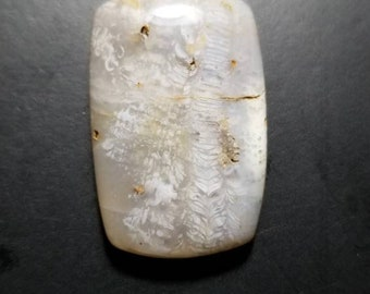 53ct fossil coral rectangle cushion cabochon