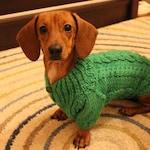 Dog sweater, sweater for dachshund, dog clothes, clothing for dog, dachshund clothes. Dog Sweater, Knit Dog Clothing