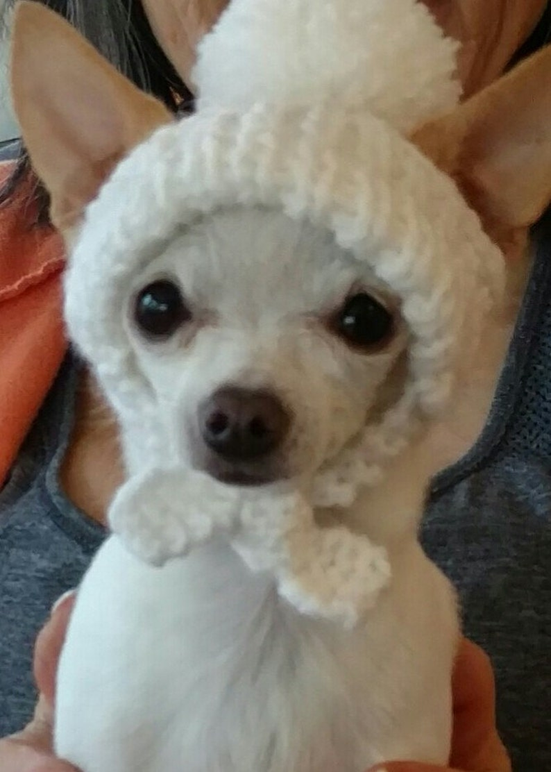 Dog hat.Pet hats.Hat for dog. Hats for pets. image 0