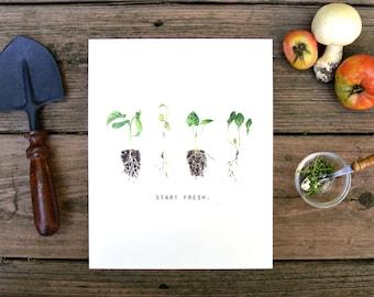 Start Fresh, Sprout, Seedling, Watercolor, Food Illustration, Kitchen Decor, Inspiration, Art Print, 8x10