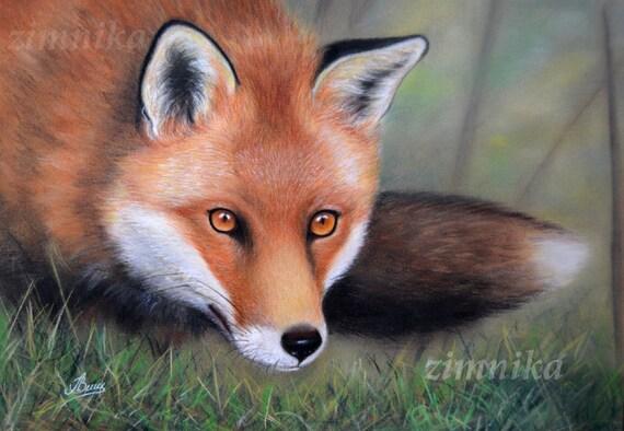 Volpe Rossa Disegno Pastello Matite Colorate Animali Etsy