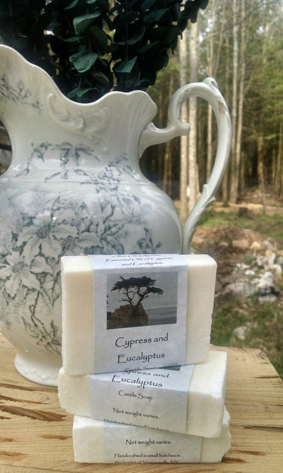 Cypress and Eucalyptus Castile Soap