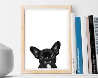 Black Dog Bulldog - Instant download - Art