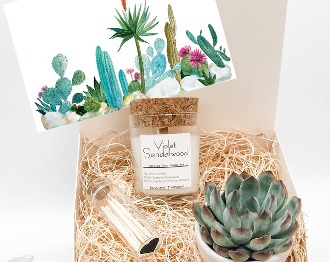 Custom 8oz Fragrance Free Personalized Succulent Gift Box Set |  Candle | Plant Send a Gift Customize your card
