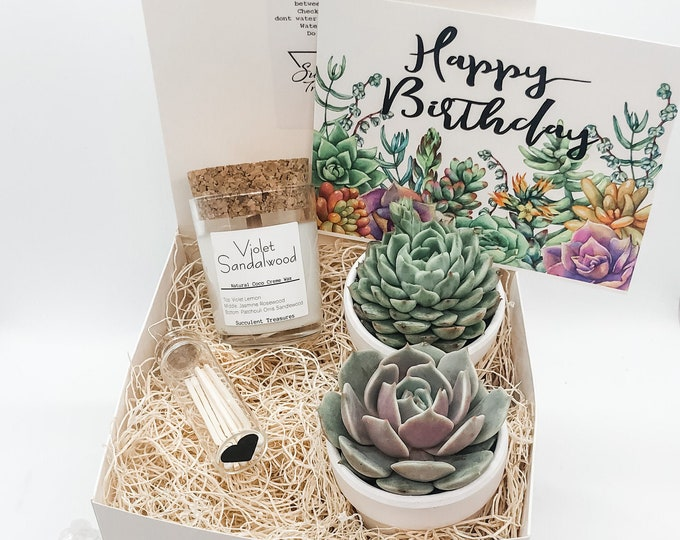 Birthday Gift Box Succulent Gift box set |  Send a Gift | Personalize