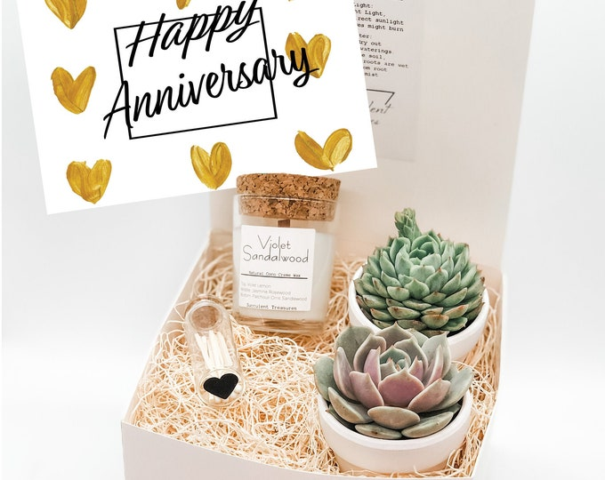 Anniversary Gift Box Succulent Gift box set |  Send a Gift | Personalize