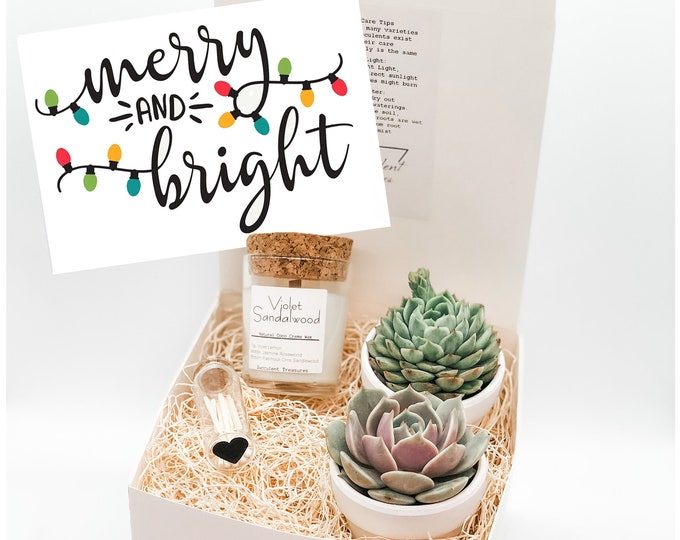 Christmas Succulent Gift Box |  Candle |  Merry & Bright Succulent Box