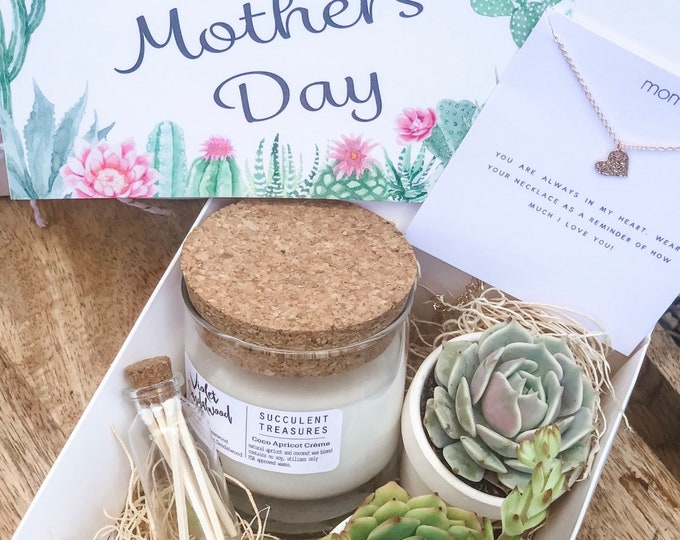 Mothers Day Gift Box Succulent Gift box set |  Send a Gift | Personalize