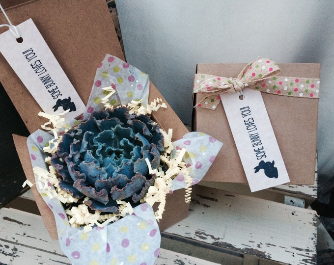 "Some Bunny Loves You Succulent Treasures Easter Gift Box. beautiful 4""  Premium Echeveria succulent gift box."