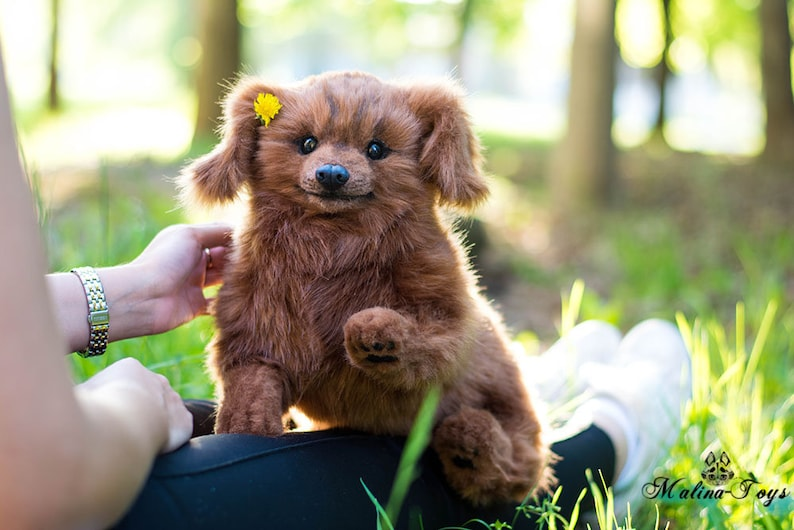 In Stock!For Sale! Cute puppy! Fluffy dog  Dachshund 100% Handmade!  Poseable toy