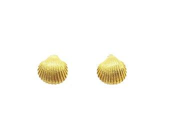 sea shell earrings