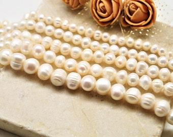 Freshwater beads white 5/6 mm, 6/7 mm, 7/8 mm
