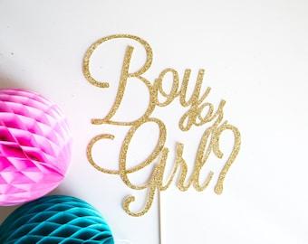 Boy or Girl Cake Topper  l  Gender Reveal Cake Topper  l  Gender Reveal Party  l  Baby Shower Cake Topper  l  Boy or Girl?