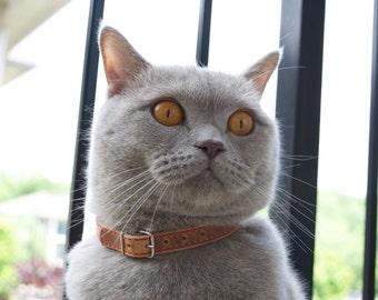 Cat Collar, Leather Cat Collar, Personalized Leather Cat Collar, Horween Leather Cat Collar, Red Thread Cat Collar