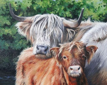 Highland Cow & Calf Print, Hairy Coos (LE 100) 30x40cm or 40x50cm mounted by Janet Carson