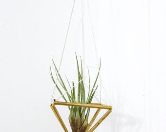 Macrame Hanger with Big Tillandsia Airplant, Geometric Planter, Air Plant Holder, Macrame Himmeli Airplant, Tillandsia Planter, Plant Holder