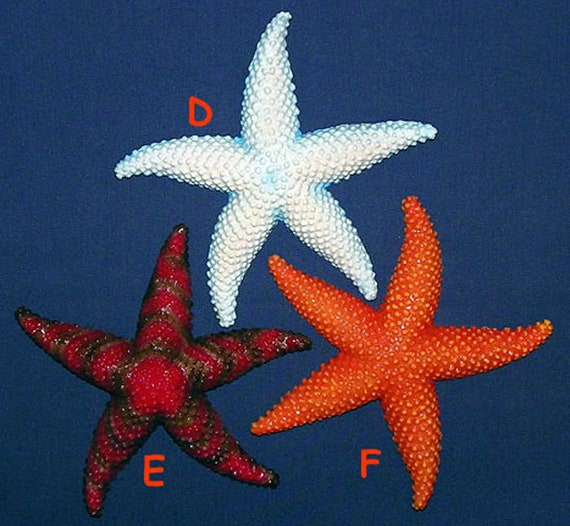 """Tropical Fish Seahorse Pair Wall Plaque 6/""""X3/""""~Nautical Beach Sealife Decor"""