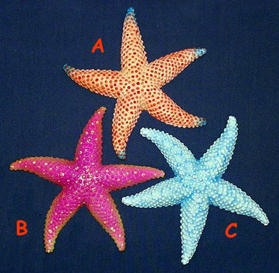 "Tropical StarFish Sea Star Wall Plaque 6/""X6/"" ~ Nautical Beach Sealife Decor"